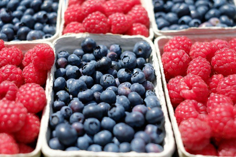 berries-1493905_1920