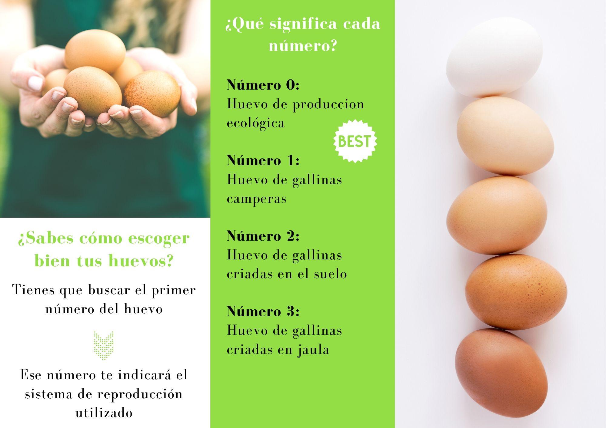 Escoge bien los huevos